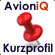 Kurzprofil AvioniQ Interim Management
